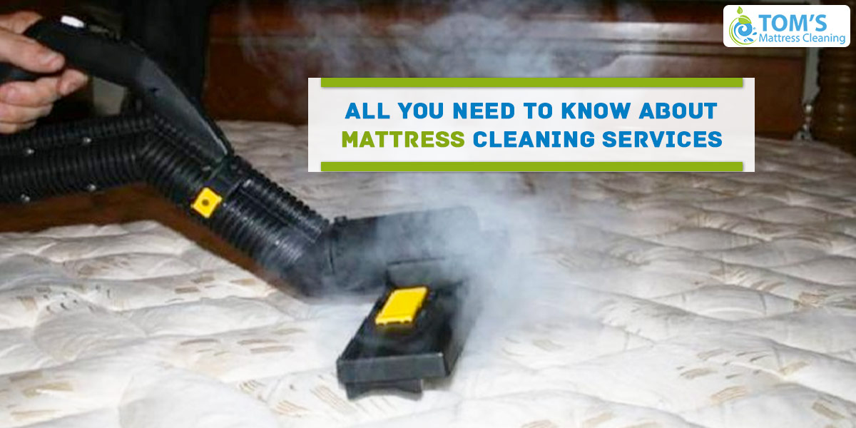 All You Need To Know About Mattress Cleaning Services